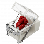 CAD Rendering prototype ex-vivo heart perfusion experimental set-up
