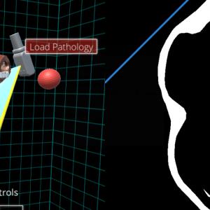 Echocardiography SimulatorHTML5. Unity Engine.